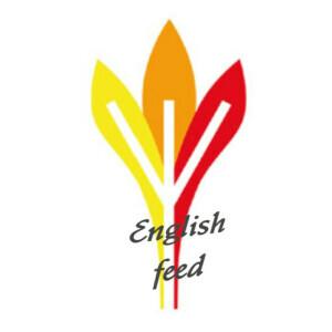 Germanische Heilkunde English